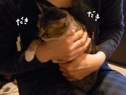 f:id:akiyochan15:20120318132100j:image