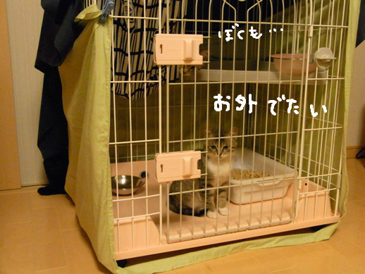 f:id:akiyochan15:20120327105629j:image