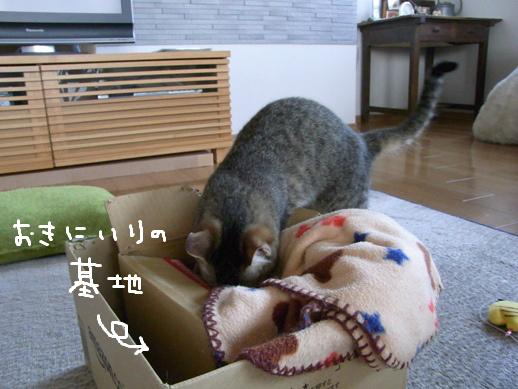 f:id:akiyochan15:20120331025219j:image