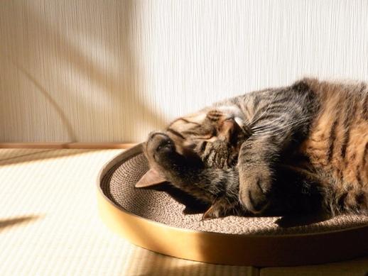 f:id:akiyochan15:20120331155014j:image