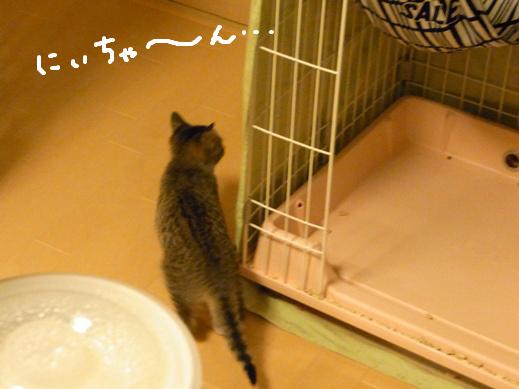 f:id:akiyochan15:20120401220959j:image