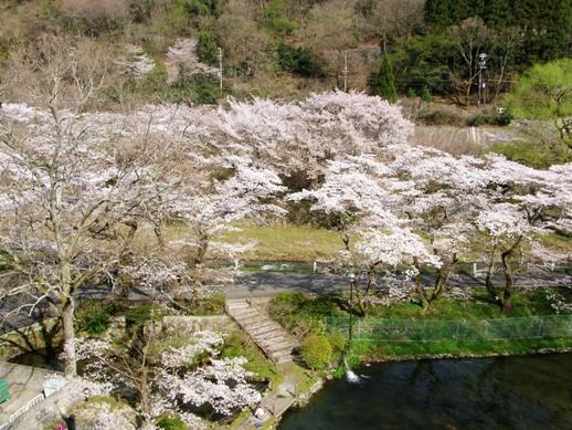 f:id:akiyochan15:20120412153935j:image