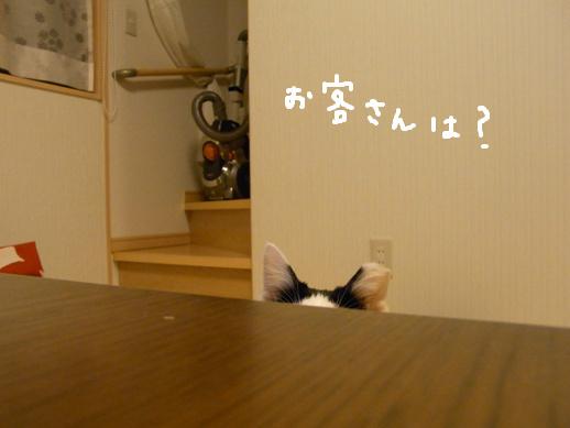 f:id:akiyochan15:20120419152058j:image