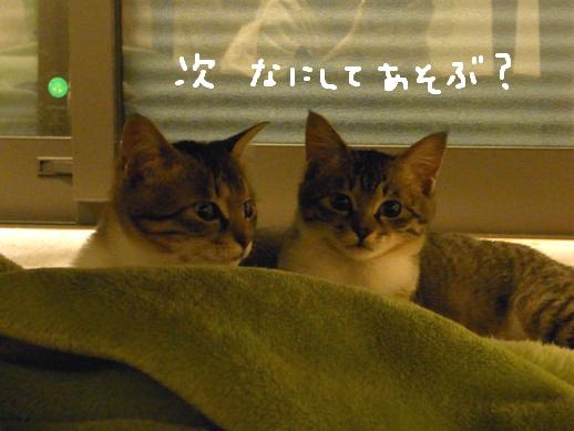 f:id:akiyochan15:20120419160911j:image
