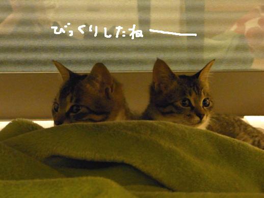 f:id:akiyochan15:20120419160940j:image