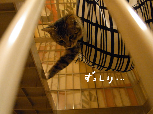 f:id:akiyochan15:20120422184335j:image
