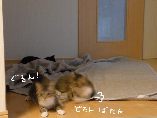 f:id:akiyochan15:20120422184611j:image