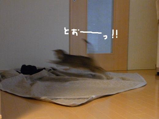 f:id:akiyochan15:20120422184721j:image