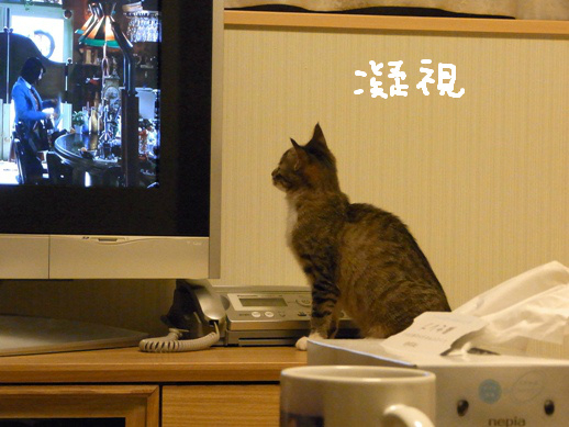 f:id:akiyochan15:20120504001418j:image
