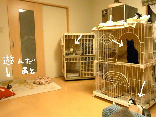 f:id:akiyochan15:20120514205950j:image