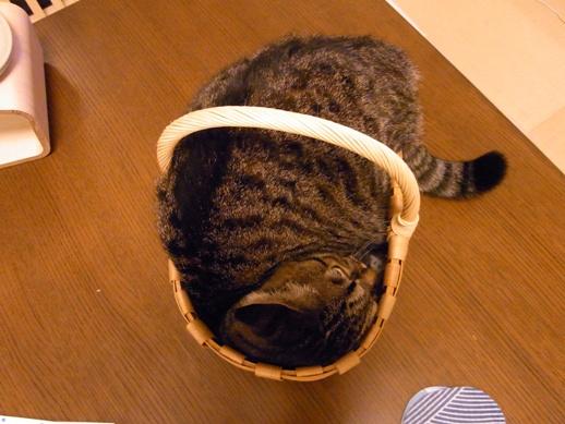 f:id:akiyochan15:20120816223600j:image