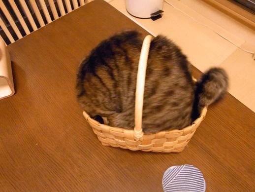 f:id:akiyochan15:20120816223710j:image