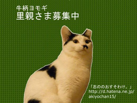 f:id:akiyochan15:20121101203903j:image:w350