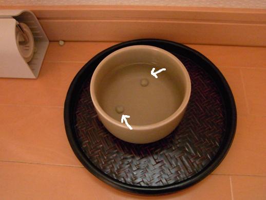 f:id:akiyochan15:20121123133939j:image