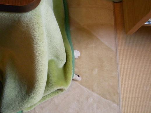 f:id:akiyochan15:20121123162051j:image