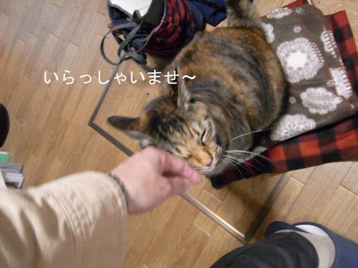 f:id:akiyochan15:20121213161222j:image