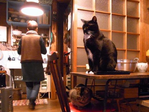 f:id:akiyochan15:20121228151230j:image