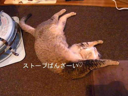 f:id:akiyochan15:20121230152410j:image