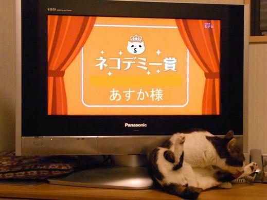 f:id:akiyochan15:20130102223812j:image