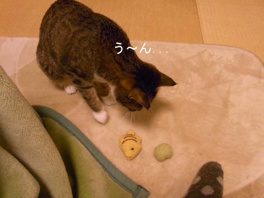 f:id:akiyochan15:20130110204713j:image