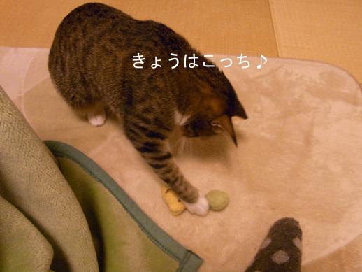 f:id:akiyochan15:20130110204716j:image