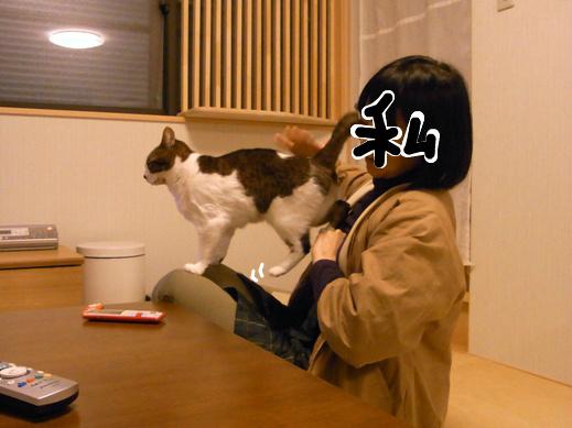f:id:akiyochan15:20130214162258j:image