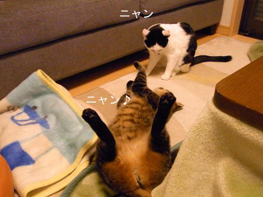 f:id:akiyochan15:20130218024934j:image
