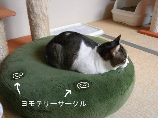 f:id:akiyochan15:20130310182432j:image