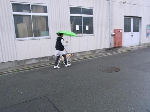 f:id:akiyochan15:20130407102211j:image