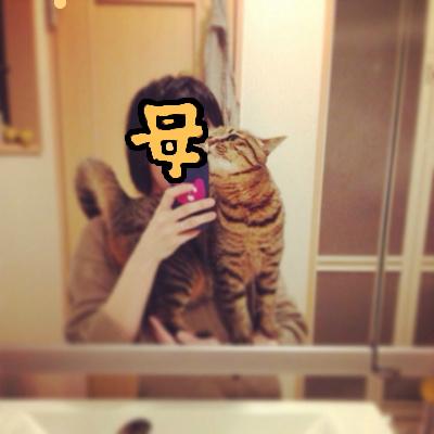 f:id:akiyochan15:20140215003645j:image:w400