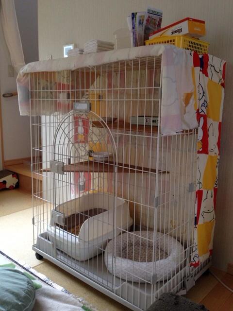 f:id:akiyochan15:20140628124603j:image:w389
