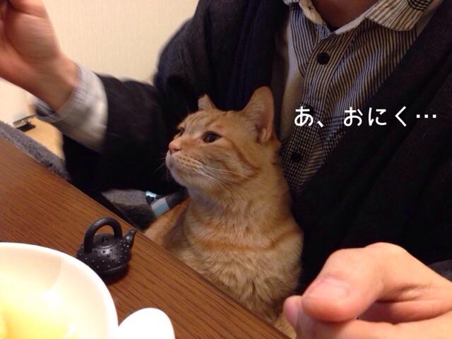f:id:akiyochan15:20150118140039j:image:w518
