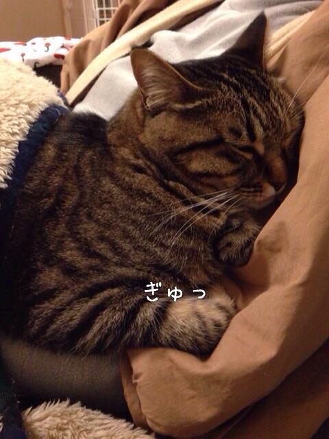 f:id:akiyochan15:20150212125108j:image:w389