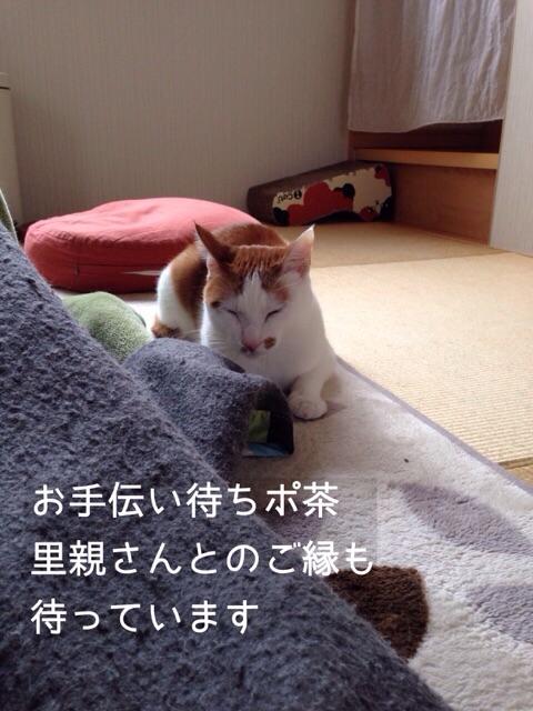f:id:akiyochan15:20150212130957j:image:w389