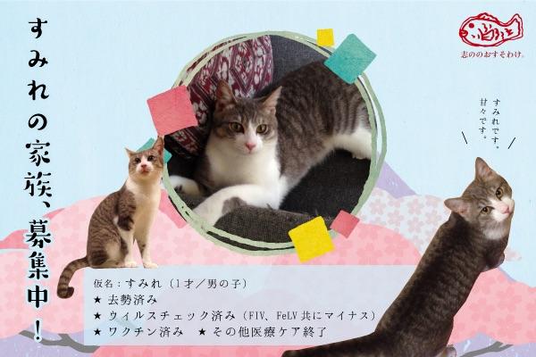 f:id:akiyochan15:20150520162510j:image:w400