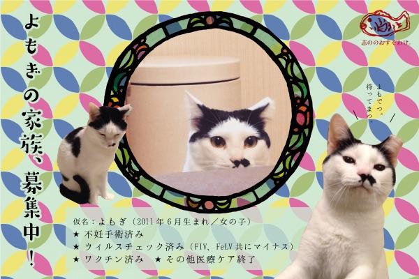 f:id:akiyochan15:20150520162512j:image:w518