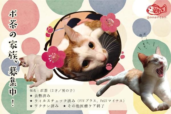 f:id:akiyochan15:20150520162513j:image:w500
