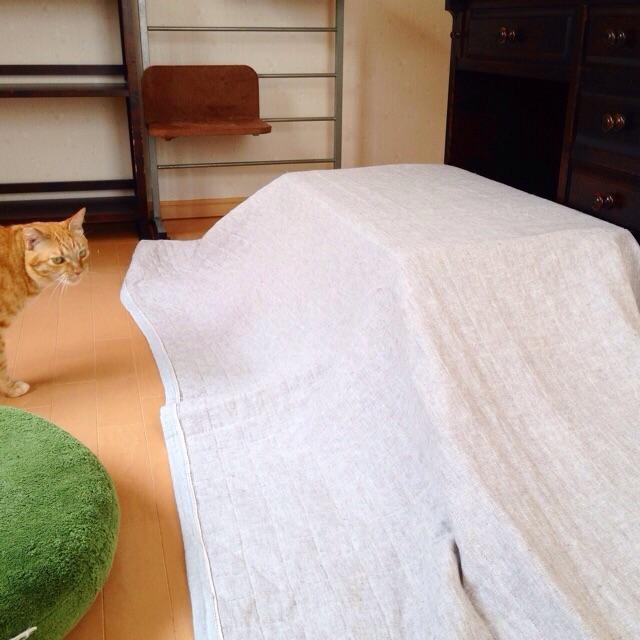 f:id:akiyochan15:20150813142736j:image:w400
