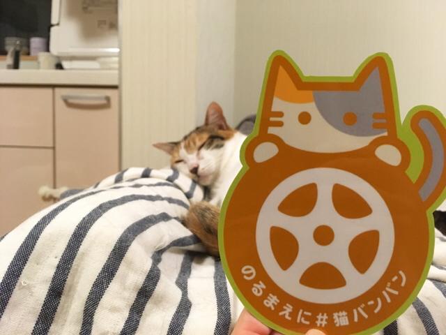 f:id:akiyochan15:20170901154639j:image:w518