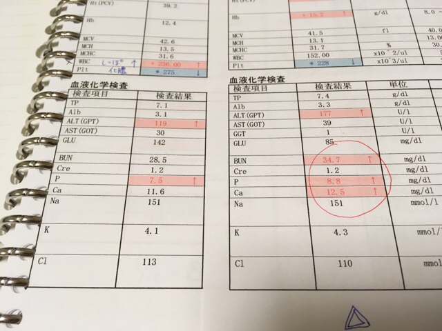 f:id:akiyochan15:20180404135654j:image:w518