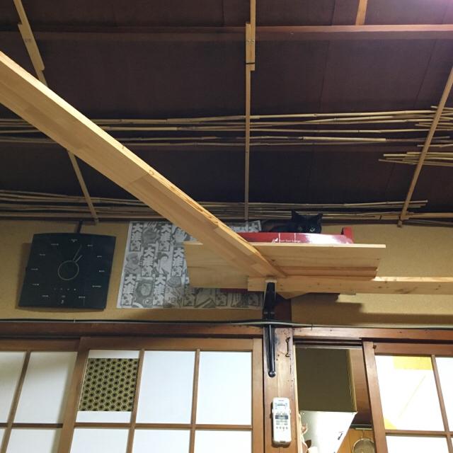 f:id:akiyochan15:20180611133738j:image:w450