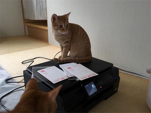 f:id:akiyochan15:20181217220200j:image