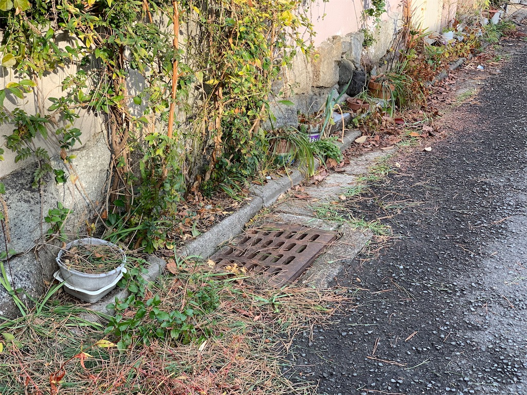 f:id:akiyochan15:20210205155457j:image