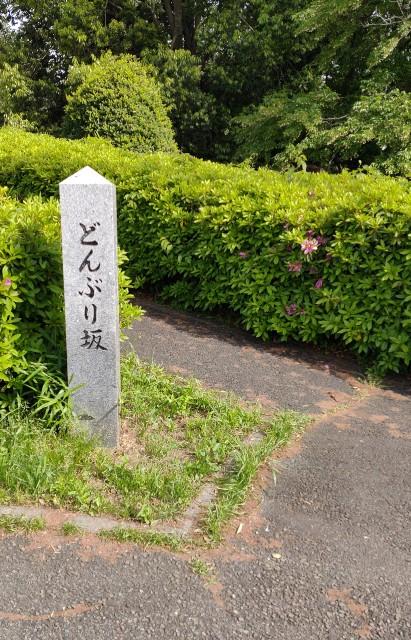 f:id:akiz-looms:20210504164743j:image