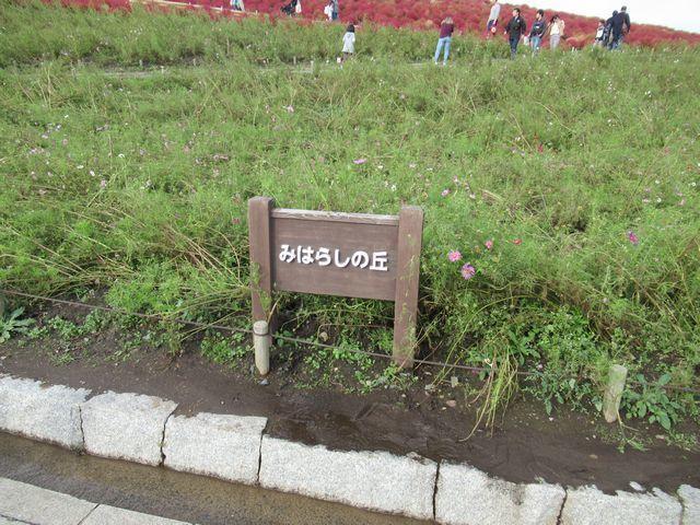 f:id:akizo_da:20191027004608j:plain