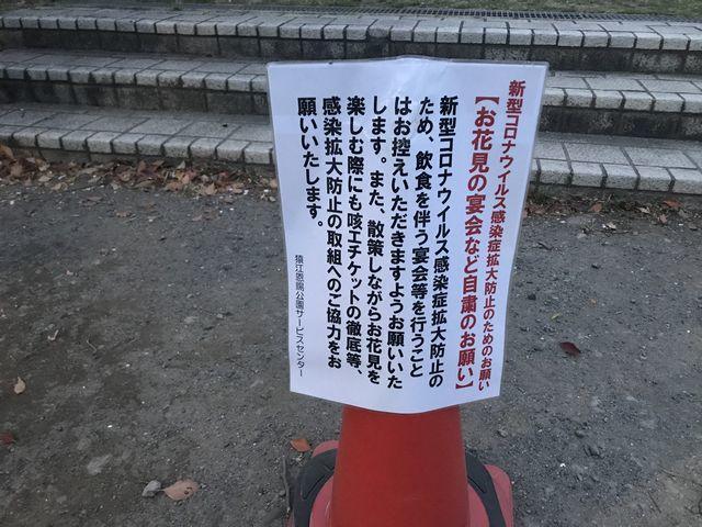f:id:akizo_da:20200328173426j:plain
