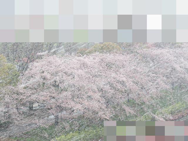 f:id:akizo_da:20200329153018j:plain