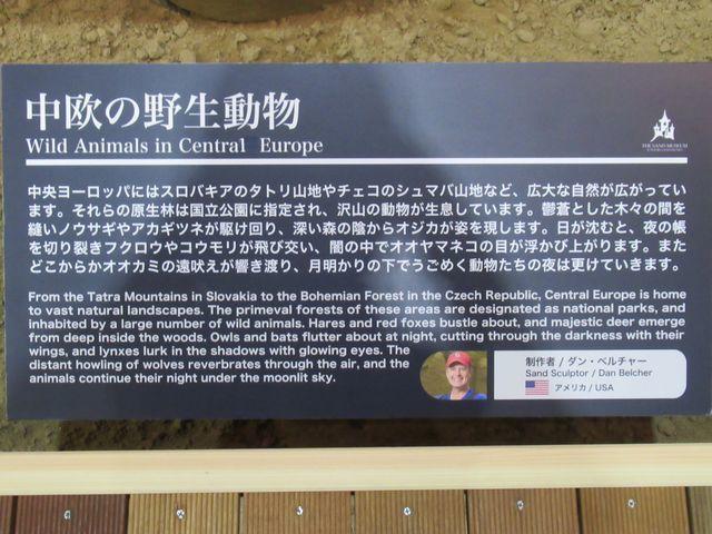 f:id:akizo_da:20200725091307j:plain