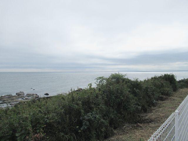f:id:akizo_da:20201012213532j:plain