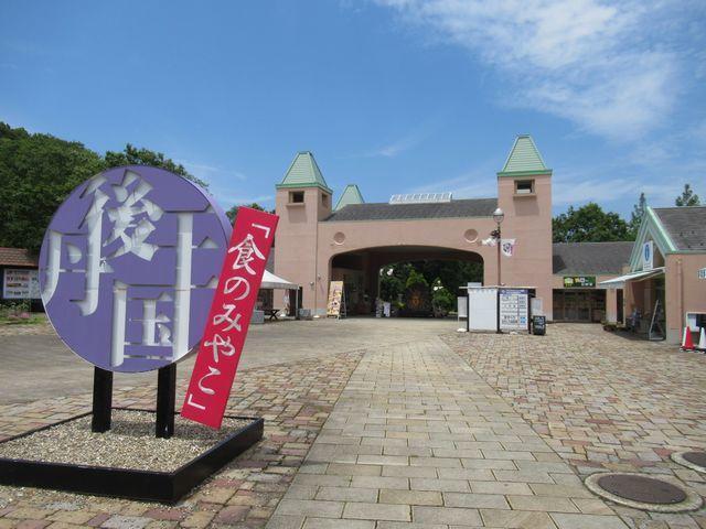 f:id:akizo_da:20210612134625j:plain